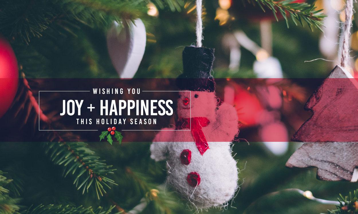 Wishing You Joy + Happiness this Holiday Season